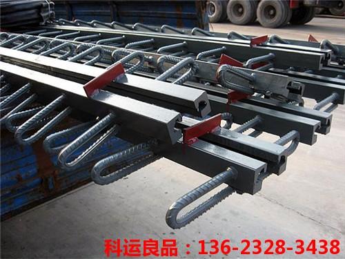 C型F型E型Z型RG型160型科运良品桥梁伸缩缝图集8
