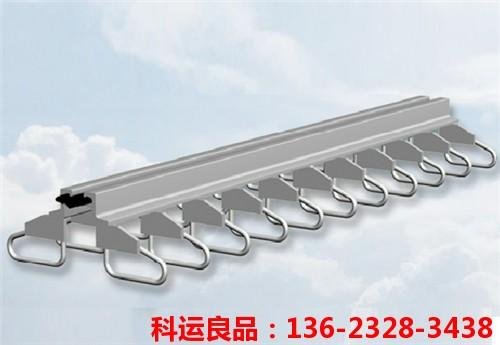 科运良品防水桥梁伸缩缝装置养护2