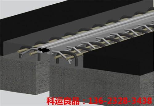浅埋式毛勒桥梁伸缩缝安装示意图1