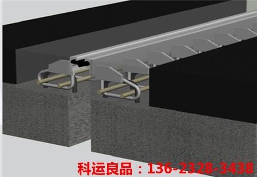 浅埋式毛勒桥梁伸缩缝安装示意图2