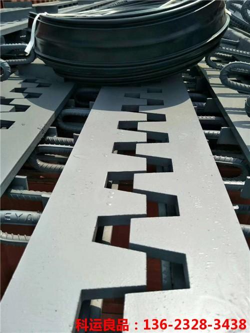科运良品KY-SF梳齿型五防桥梁伸缩缝装置简介4