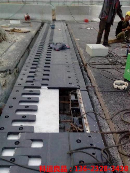 科运橡塑 公铁路桥伸缩缝装置 相信品牌的力量2