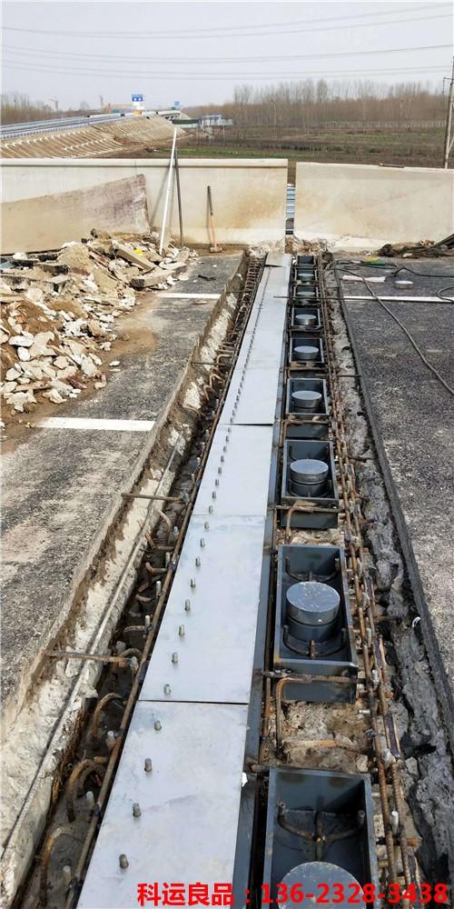 科运橡塑 公铁路桥伸缩缝装置 相信品牌的力量5