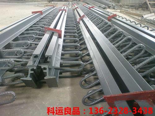 模数式桥梁伸缩缝 科运橡塑国标桥梁伸缩缝装置生产研发中心2