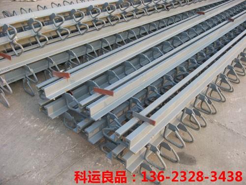 模数式桥梁伸缩缝 科运橡塑国标桥梁伸缩缝装置生产研发中心3
