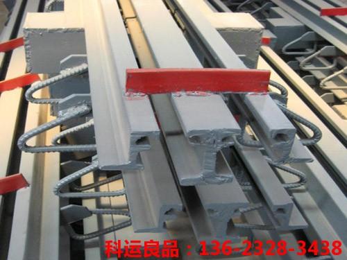 模数式桥梁伸缩缝 科运橡塑国标桥梁伸缩缝装置生产研发中心6