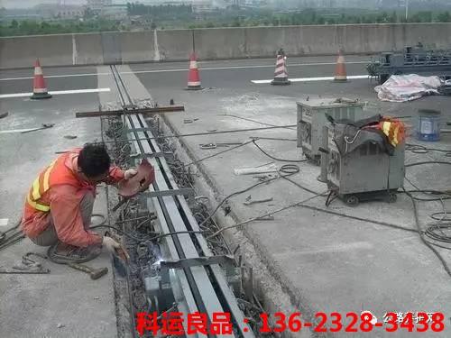 桥梁伸缩缝在桥梁结构中的作用和病害预防